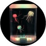 Aquarium - mit 'glow in the dark' Qualle