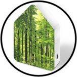 Zwitscherbox Forest